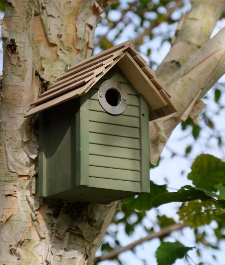 New England Nestbox, perfect for small bird species
