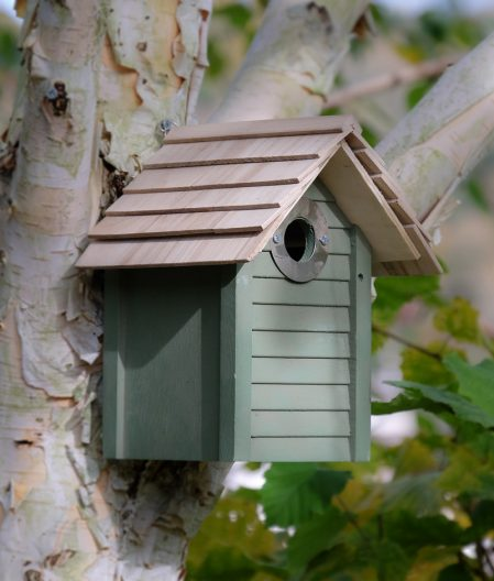 New England Nestbox perfect for small bird species such as blue tits, coal tits, marsh tits etc and a delightful addition to your garden