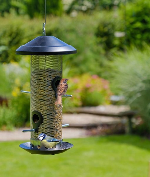 Seed feeder for wild birds shown hanging in the garden with birds using it